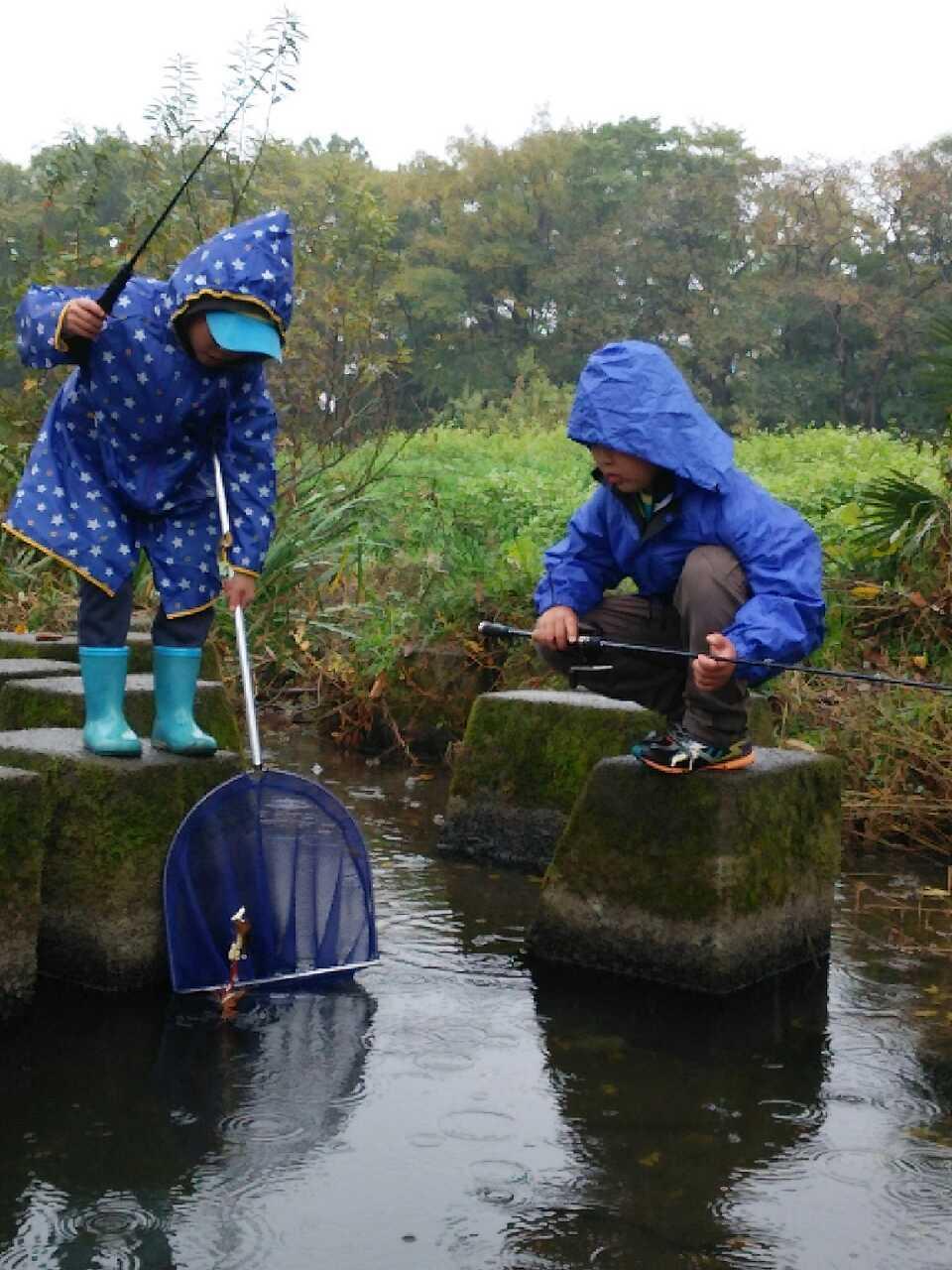 ザリガニ釣りには餌があれば手軽に釣りにいけます